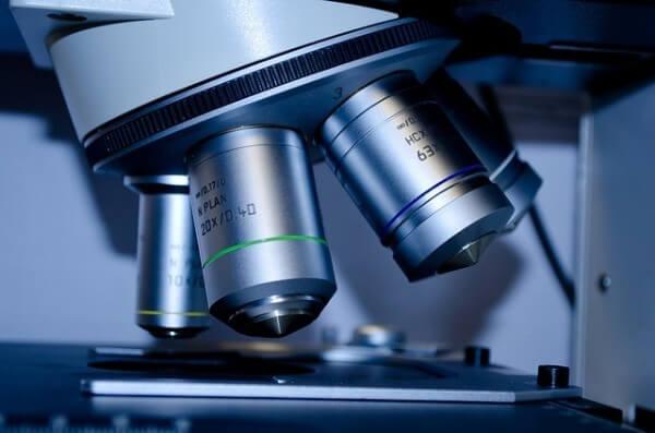 iPS細胞 再生医療 バイオ バイオテクノロジー