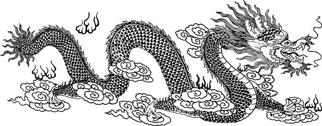 ドラゴンチャート 「W」のイメージ
